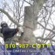 D&M Tree Service Commercial
